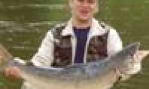 Флешер для Зимней Рыбалки (Видео 88). Чем Полезен Флешер