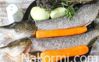 Щука тушеная с овощами в томатной заливке