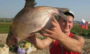Рыбные места в Брянске и Брянской области: плюсы и минусы