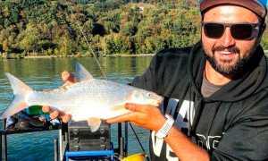 Рыба подуст и способы его ловли