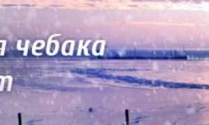 Ловля чебака зимой