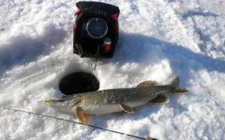 Подбираем эхолот для подледной рыбалки