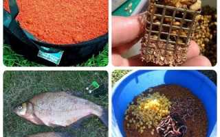 Весенняя ловля леща фидером – особенности поведения рыбы и подбор снастей