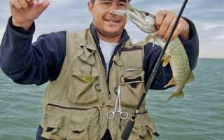 Рыбалка на озерах. Как рыбачить на озерах – методы и снасти