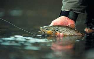 Рыбалка в бурятии
