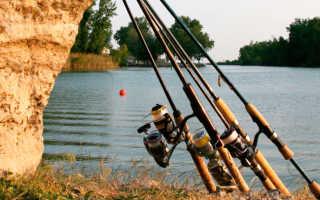 Ловля щуки на спиннинг с лодки особенности рыбалки и требования к снастям