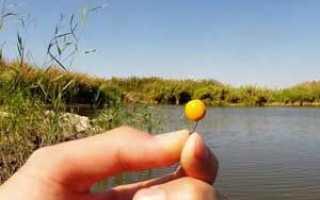 Готовим горох для ловли карпа и других рыб