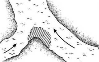 Ловим налима на кружки