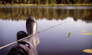 Рыбные места в Жуковском: плюсы и минусы