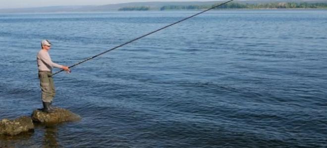 Чем отличается спортивная ловля на поплавок от любительской