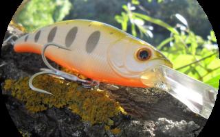 Rapala original floater – плавающий воблер для ловли на течении