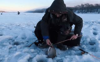 Ловля зимой леща на течении