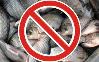 Когда начинается и заканчивается запрет на рыбалку