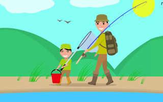 Ловля живца летом и зимой: 10 способов поймать живца