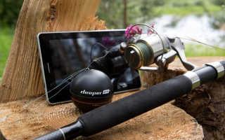 Выбор эхолота для рыбалки и правила использования