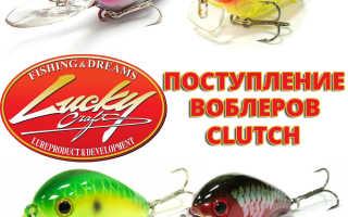 Воблер lucky craft clutch — идеальный поверхностный поисковик