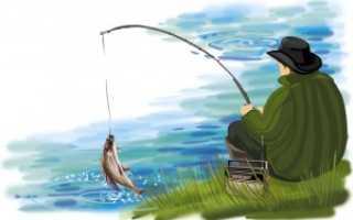 Электронная приманка для рыбы «супер клев» – отзывы