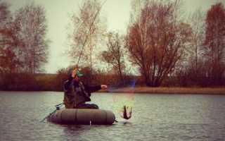 Ловил на спиннинг с лодки