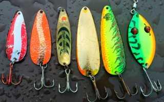 Выбор лучшей блесны на щуку для рыбалки летом