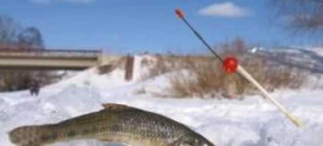Ловля пескаря зимой