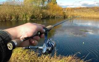 Рыбалка на щуку осенью спиннингом и подготовка снасти с приманками