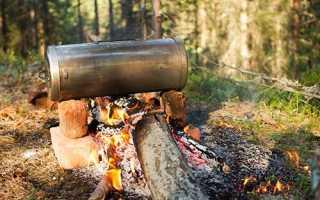 Сазан горячего копчения: рецепт для дома и походного приготовления