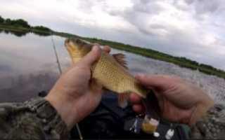 Ловля весной на поплавочную удочку видео рыбалки на карася