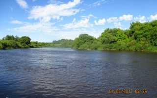 Отчет о ловле щуки на реке днепр